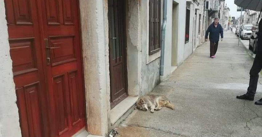 lady čeka ispred kuće