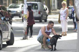 ulicni pas