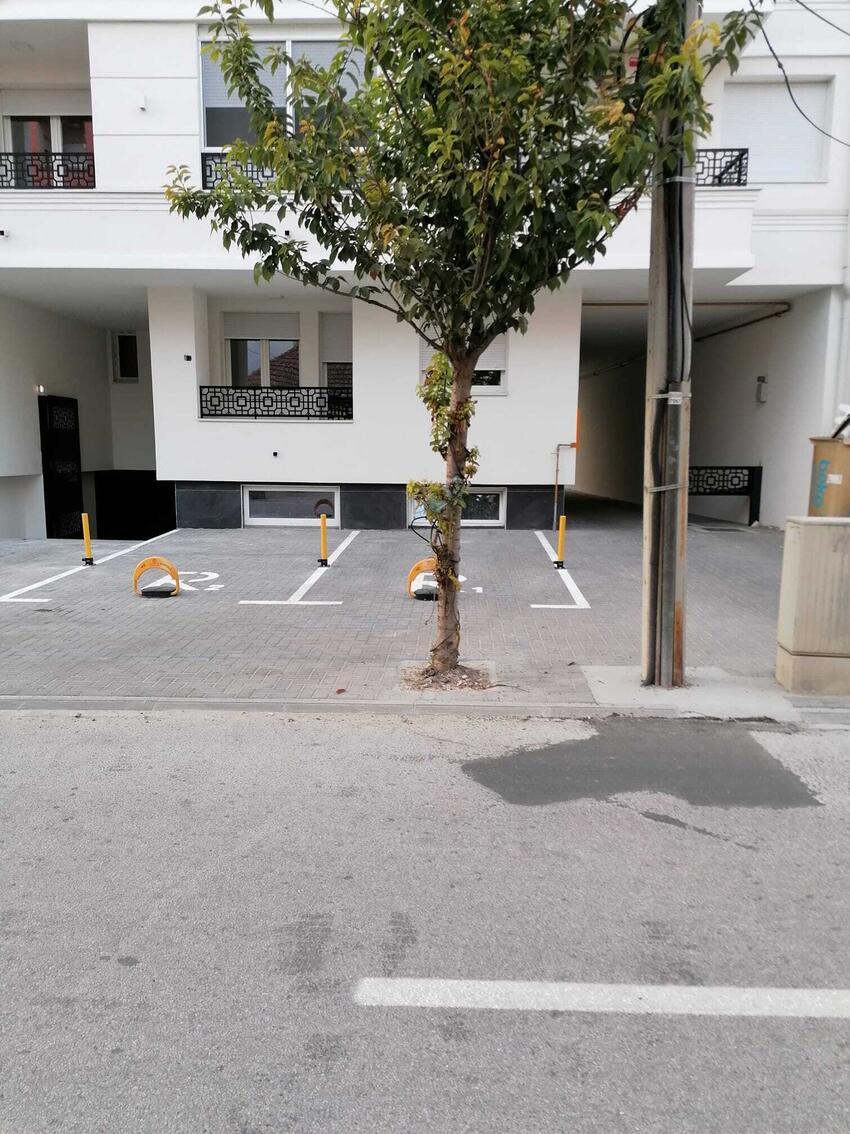 beton-drvo