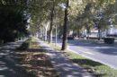 futoska-ulica-novi-sad