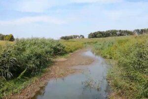 reka krivaja