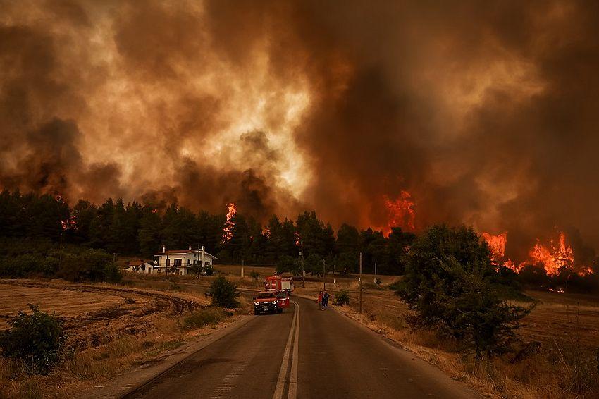 grčka požar 4
