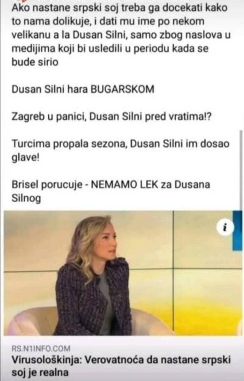 dusan-silni