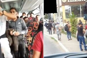 migranti-beograd-bus