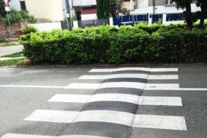 pirot-zebra-lezeci-policajac