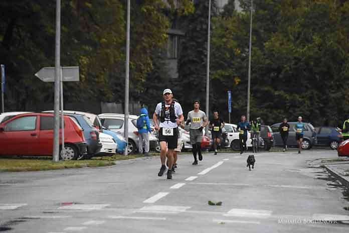 pas-brka-maratonac-2
