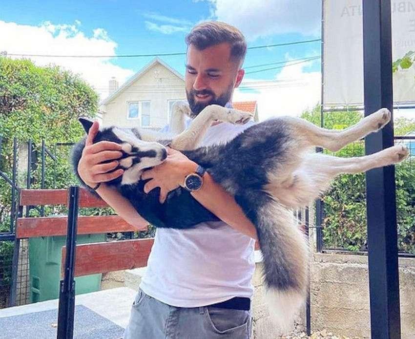 veterinar vuk vukoje